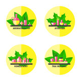 Alternative medicine icon set stock illustration