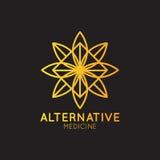 Alternative Medicine. IV Vitamin Therapy, Anti-Aging, Wellness, Ayurveda, Chinese Medicine. Holistic centre Stock Photography