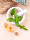 Alternative medicine lemon basil oil natural spas ingredients fo Stock Photo