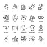 Alternative medicine line icons. Naturopathy, traditional treatment, homeopathy, osteopathy, herbal fish and leech. Therapy. Thin linear signs for health care Stock Photo