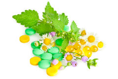 Alternative medicine. Pills and herbs Royalty Free Stock Photography