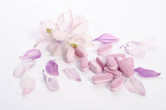 Alternative medicine tablets with flowers and petals on table Stock Photography