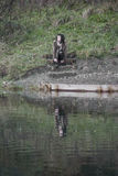 Alternative Model sat on Step near water. In british countryside stock photography