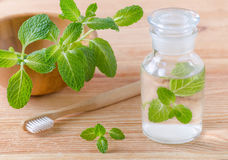 Alternative natural mouthwash bottle with mint and wood toothbrush closeup on wooden stock photography