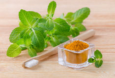 Alternative natural toothpaste turmeric powder, curcuma and wood toothbrush, mint on wooden. Background Royalty Free Stock Images