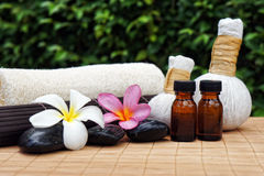 Alternative Nature Treatment Spa Concept stock image