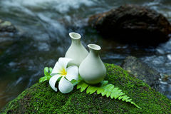 Alternative skin care  homemade lotion and pumerlia flower on st Stock Image