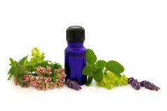 Alternative Therapy Stock Photos