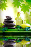 Alternative treatments of natural essences vertical composition Royalty Free Stock Photography