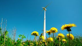 Alternative wind energy generator turbine and yellow dandelion flowers. Move in wind. Clean electricity generation from natural resources. Static shot stock footage