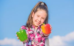 Alternatives Entscheidungskonzept Kinderm?dchen-Griffrot und Himmelhintergrund der gr?nen Paprikas Pfeffer-Ernte Kind des Kinderg stockbilder