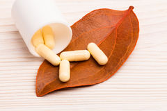 Alternativmedizin mit einzelnem orange Blatt Lizenzfreie Stockbilder