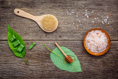 Alternativt hudomsorg och hemlagat skurar med naturligt ingredien arkivfoton