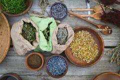 alternativt magasin för brunnsort för medicin för objekt för ginkgo för bambubadbiloba Royaltyfri Foto