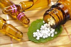 alternativt magasin för brunnsort för medicin för objekt för ginkgo för bambubadbiloba arkivbild