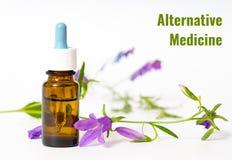 alternativt magasin för brunnsort för medicin för objekt för ginkgo för bambubadbiloba Royaltyfria Foton