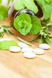 Alternatywna medycyna z ziołowymi i homeopatycznymi pigułkami fotografia stock