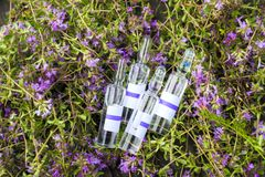 alternatywna wanny bambusa biloba rzeczy ginkgo leków, tray w spa Tymiankowe i medyczne ampułki olejki eteryczne Obrazy Royalty Free