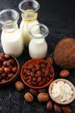 Alternatywni typ mleko Weganinu nabiału zastępczy mleko Zdjęcia Stock