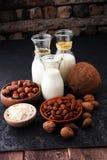 Alternatywni typ mleko Weganinu nabiału zastępczy mleko Zdjęcia Royalty Free