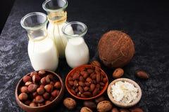 Alternatywni typ mleko Weganinu nabiału zastępczy mleko Obrazy Stock