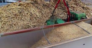 Alternatywny tankuje, biofuels, produkcja alternatywny tankuje Produkcja paliwo brykietuje, strzępiący łupki drewno zbiory
