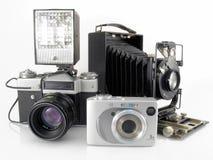 Alternazione delle generazioni Fotografie Stock