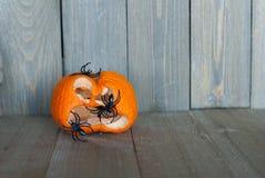 Alternde Steckfassung-Olaterne mit schwarzen Spinnen auf ihr auf einem hölzernen Hintergrund lizenzfreies stockfoto