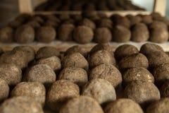 Alternkäse an der Käsefabrik Stockfoto