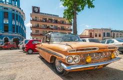 Altes amerikanisches Auto, das unter Baum steht Stockfotografie