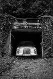 Altes Auto in einer überwucherten Fahrstraße stockfotografie