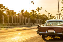 Altes Auto in Malecon-Allee in Havana, Kuba Stockfoto