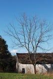 Altes Bauernhaus mit totem Baum Stockfotografie