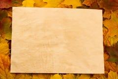 Altes Blatt Papier des Weinlesefreien raumes auf bunten Ahornblättern Stockfoto