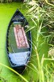 Altes blaues Boot in einem Sumpf Stockbilder
