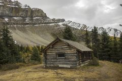 Altes Blockhaus auf Kanadier Rocky Mountains Stockfoto