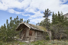Altes Blockhaus im Yukon Stockfotos