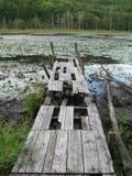 Altes Bootsdock auf einem sterbenden Teich Lizenzfreie Stockfotografie