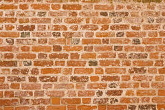 Altes brickwall Stockbilder