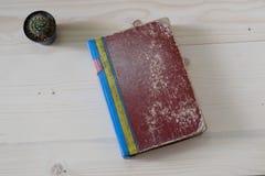 Altes Buch auf hölzerner Tabelle mit Kaktus Lizenzfreie Stockfotos