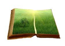 Altes Buch mit einer Landschaft Stockfotografie