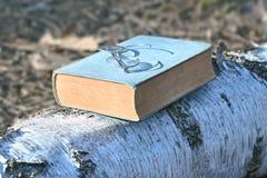 Altes Buch und Weinleseschauspiele oder -brillen draußen Stockbilder