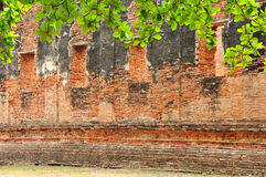 Altes Buddism bleibt Stockbilder