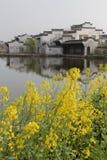 Altes chinesisches Dorf mit Rapssamenblume Stockfotos