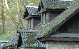 Altes Dach lizenzfreies stockfoto