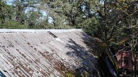 Altes Dach bedeckt mit Moos, ein Loch im Dach stock video footage