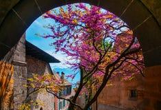 Altes Dorf in Lavaux, nahe Montreux, die Schweiz Stockfotografie