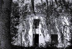 Altes Dschungelschwarzweiss-haus lizenzfreie stockbilder