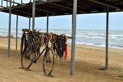 Altes Fahrrad der Fischhändler auf der Seeseite Stockbilder
