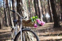 Altes Fahrrad mit Blumen im Korb, das Holz Stockfoto